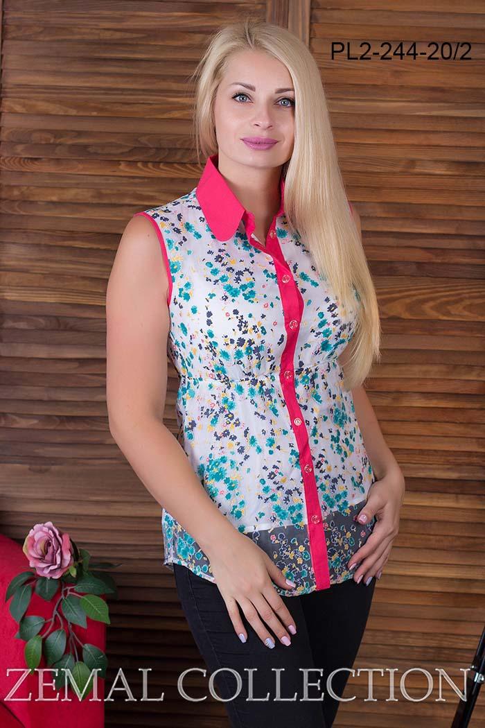 Блузка pl2-244 купить на сайте производителя