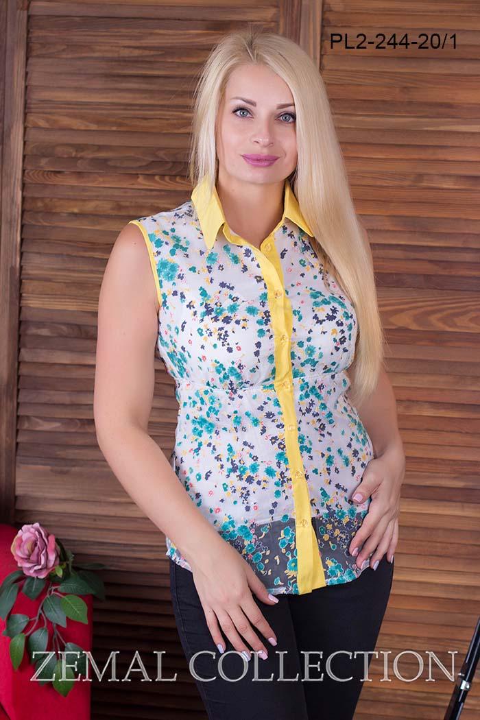 Блуза PL2-244 купить на сайте производителя